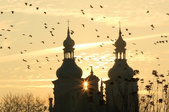 Vol d'oiseaux et silhouette d'une église au lever de soleil (Pologne) ©Bertrand Lemeunier