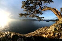 """Coucher de soleil au """"Lighthouse Park"""" près de Vancouver (BC, Canada) ©Bertrand Lemeunier"""