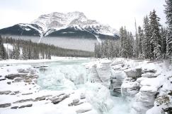 Cascade gelée dans les Montagnes Rocheuses (Route des glaciers, Alberta, Canada) ©Bertrand Lemeunier