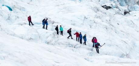 NZ_Westland_Fox-Glacier_ TERRA-TRIBUTA-12