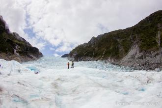 NZ_Westland_Fox-Glacier_ TERRA-TRIBUTA-16