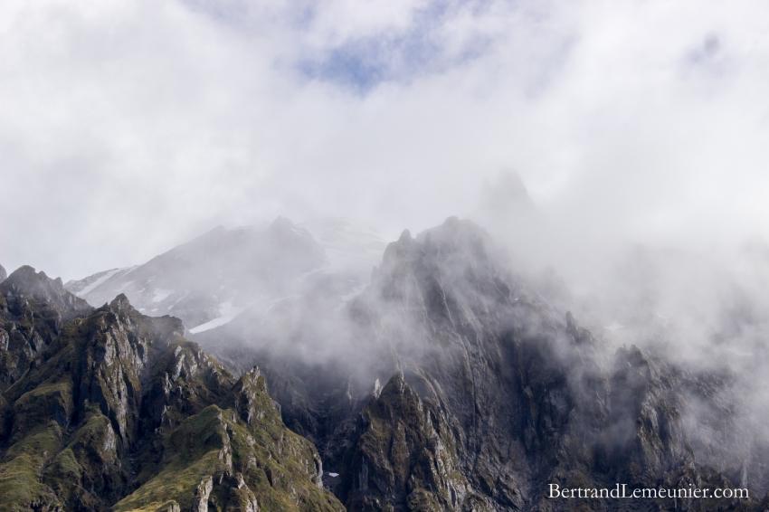 NZ_Westland_Fox-Glacier_ TERRA-TRIBUTA-2