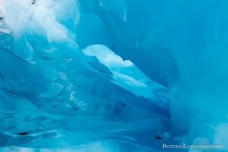 NZ_Westland_Fox-Glacier_ TERRA-TRIBUTA-4