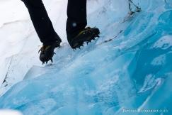 NZ_Westland_Fox-Glacier_ TERRA-TRIBUTA-6