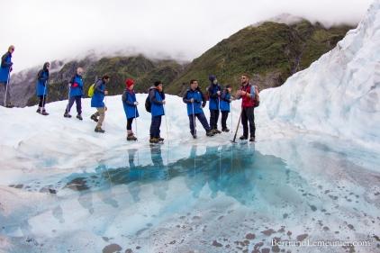 NZ_Westland_Fox-Glacier_ TERRA-TRIBUTA-9