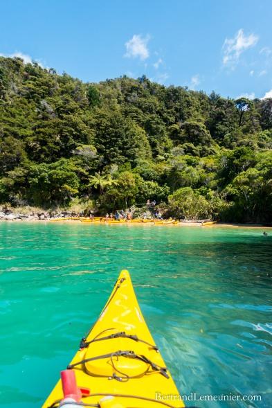 Kayak près de Watering Cove
